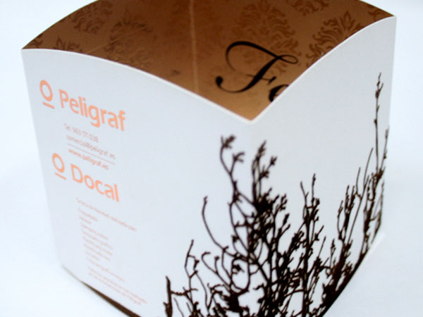 Peligraf. Design and management of christmas card 2009.