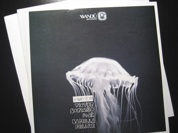Wandu Records. Packaging vinyls
